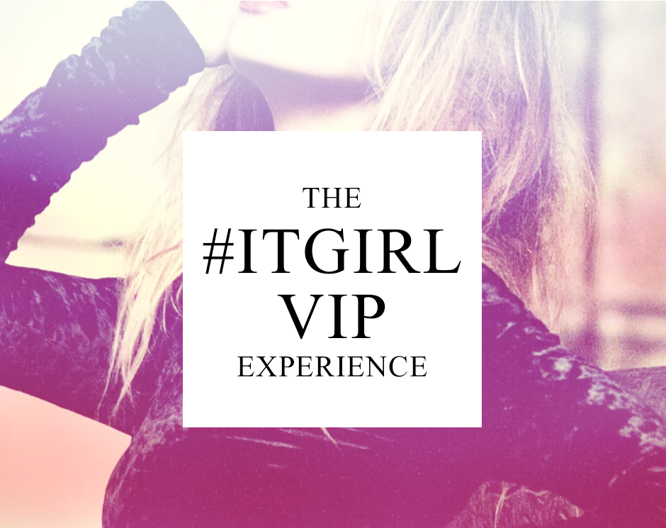 theitgirlexperience3image